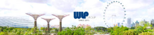 Singapore Company Registration Services by WLP