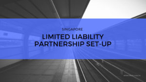 Limited Liability Partnership Company Set Up